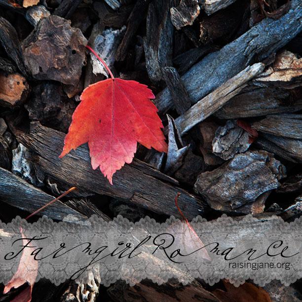 red-leaf-cropped_7034