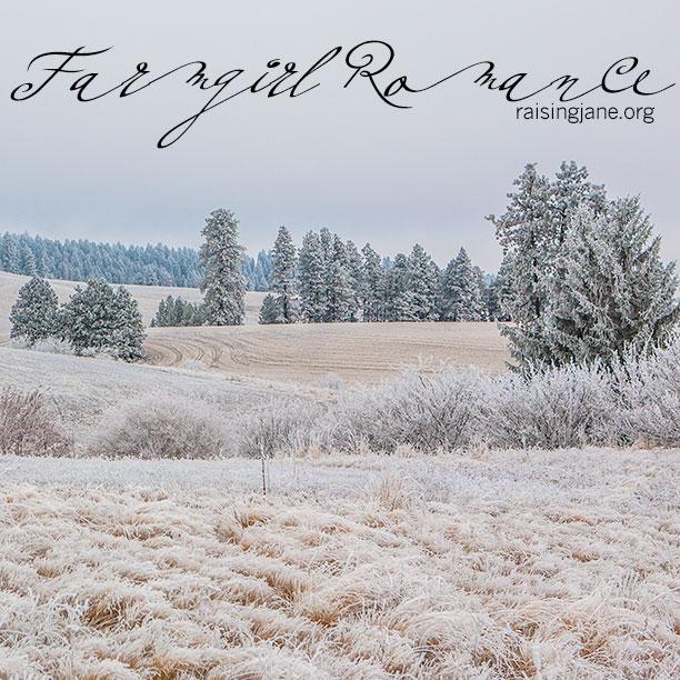 farm-romance-4731-2017