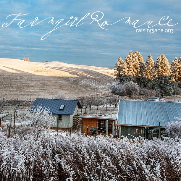farm-romance-4796-2017