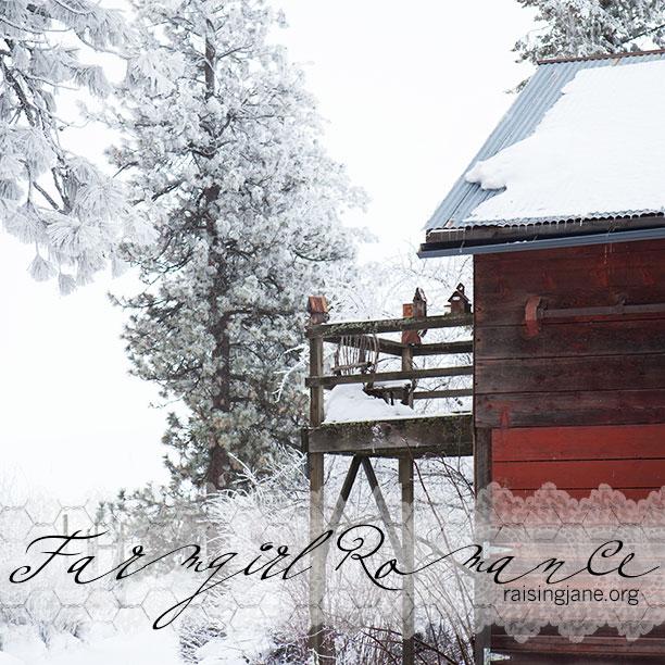 farmgirl-romance_6844