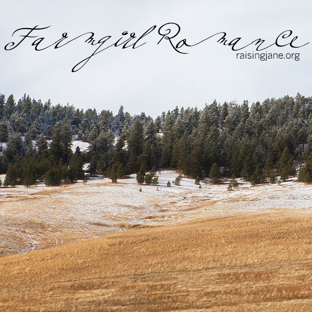 farmgirl-romance_8323