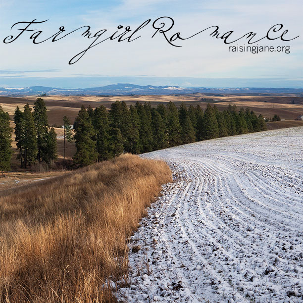 farmgirl-romance_8398