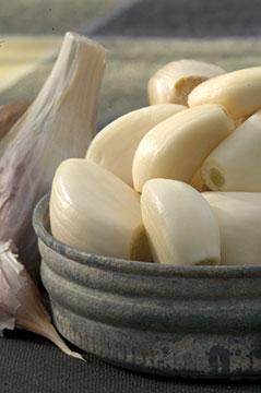 garlic-DSC_6228